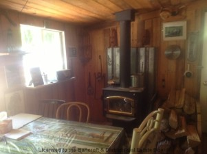Fireplace-bancroft-living north of 7